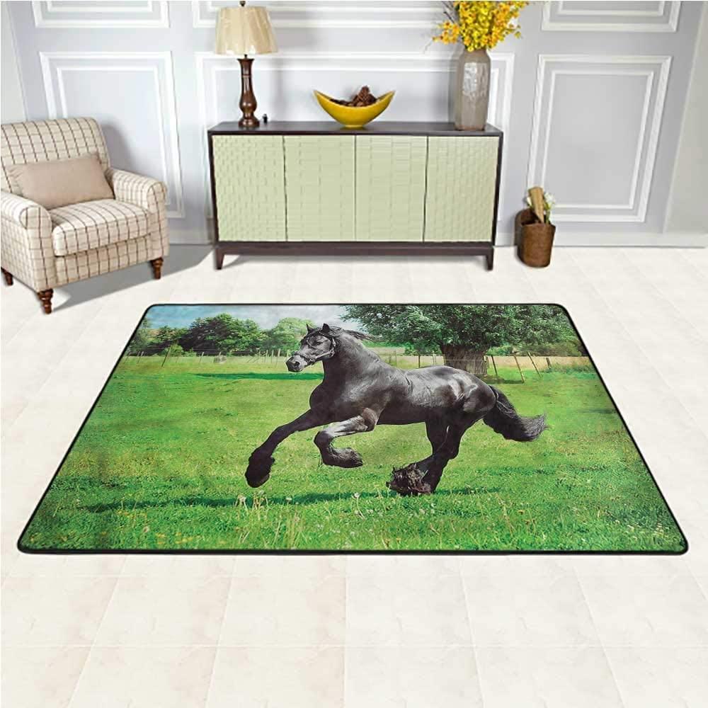 Rugs Horses, Friesian Horse Symbol Baby Crawling Mat for Living Room Nursery 4 x 4 Feet
