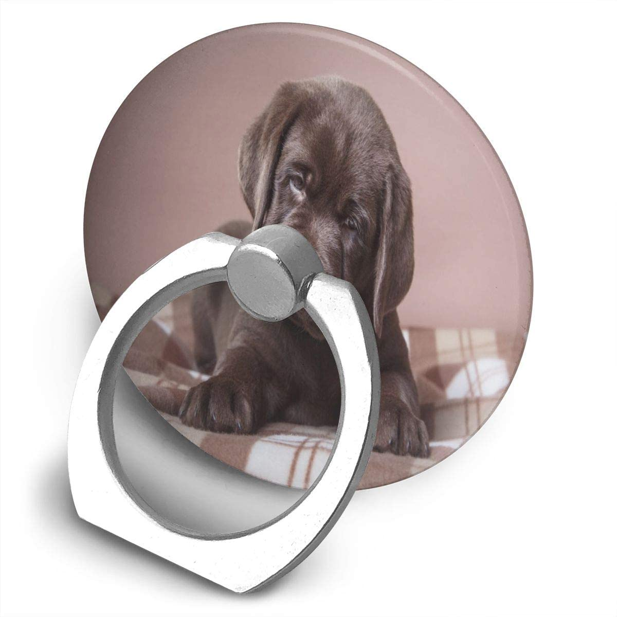 Cell Phone Ring Holder Stand Marvellous Brown Labrador Dog Puppy Adjustable 360°Rotation Round Universal Finger Grip Loop Kickstand with Silver Metal Phone Holder for Women Kids Men Ladies Smartphone