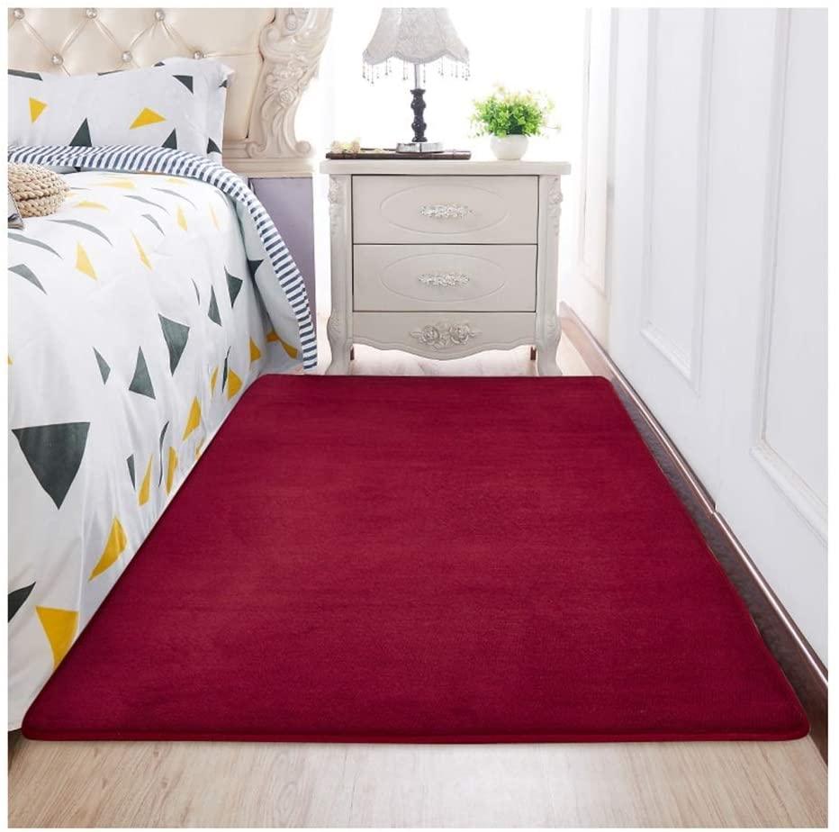 ZJX-F Bedroom Bedside Rug, Soft Comfortable Skin-Friendly Child's Room Short Plush Living Room Sofa Floor Mat Carpet (Color : Red, Size : 200cmx100cm)