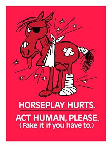 Horseplay Hurts