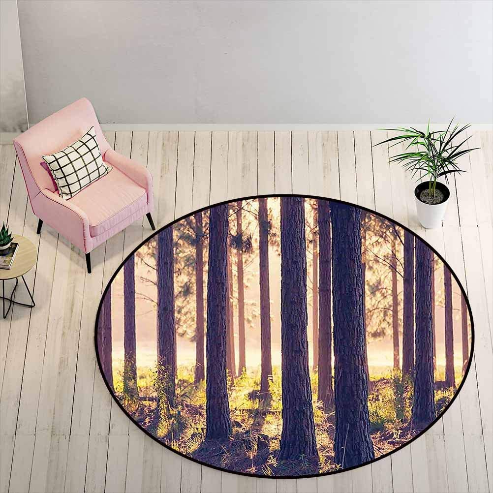 Kids Rugs for Bedroom Boys Forest Absorb Water Rug Weak Afternoon Sunbeams Autumn Forest with Leaves and Branches Image, 6.5 ft Diameter, Sand Brown Green and Brown