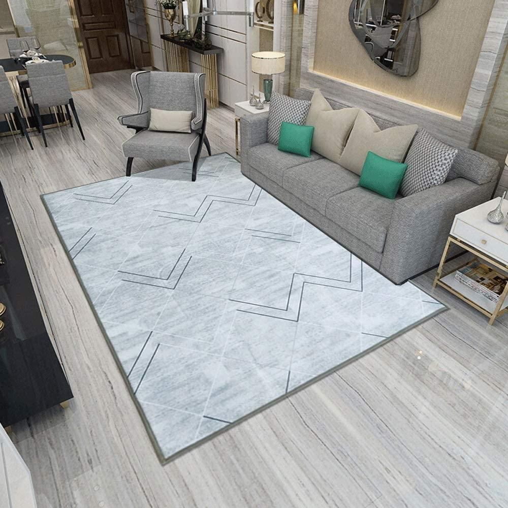 Zzalo Simple Living Room Carpet Light Luxury Soft Fashion Non-Slip Nordic Sofa Tea Table Blanket Bedroom Full Shop Room Bedside Blanket (Size : 160230cm)