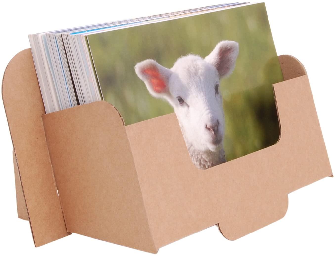 Stand-Store CARD-A6L Cardboard Leaflet Dispenser for A6 Landscape Leaflets and Postcards - Brown (Pack of 10)