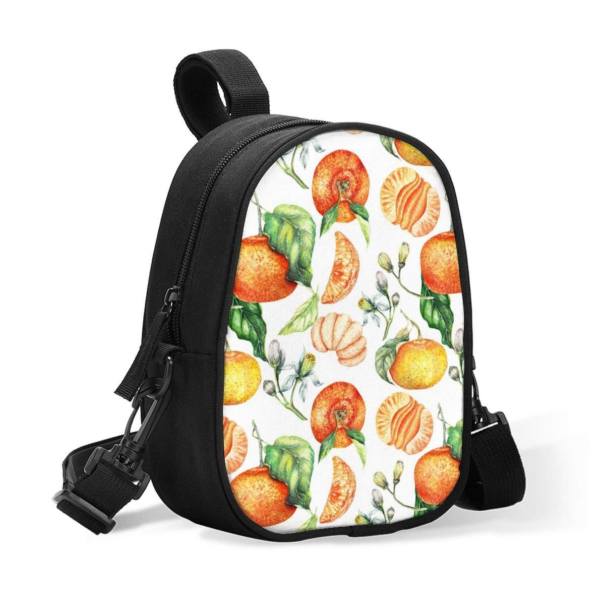 Breastmilk Cooler Bag Insulated Baby Bottle Bag Watercolor Painted Clementines Lovely Fruit Orange Reusable Baby Bottle Warmer Tote Bag Handbag Lunch Bag Box For 2 Large Bottles For Nursing Mom,Stroll