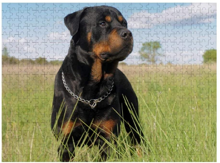 Animal Rottweiler 3D Jigsaw Puzzle 500 Pieces Wooden Puzzles for Adults Educational Toys