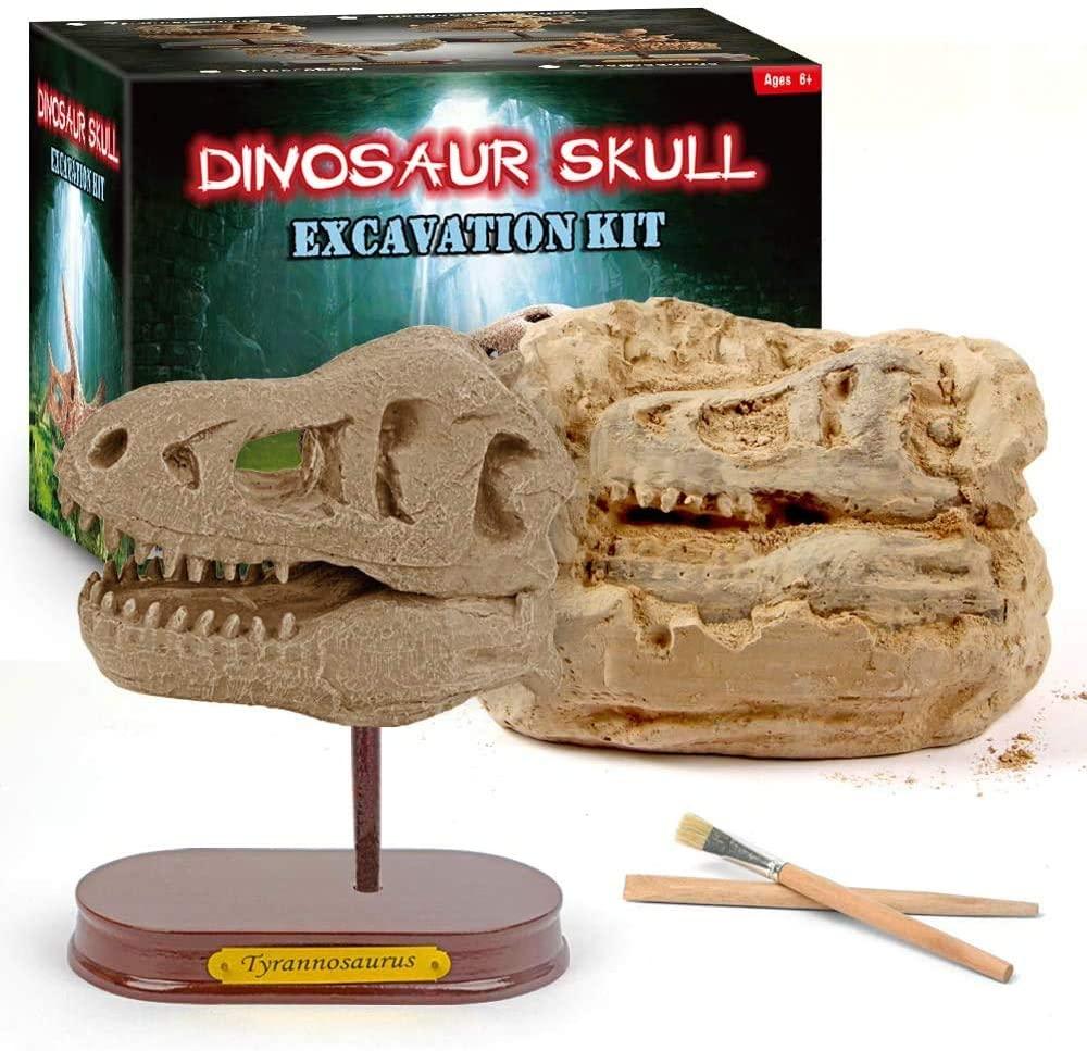 TUFF LUV Large Excavation Dig Kit for Kids T Rex Large Dinosaur Head Skull Tyrannosaurus