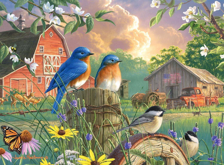 Buffalo Games - Hautman Brothers - America's Heartland - 1000 Piece Jigsaw Puzzle