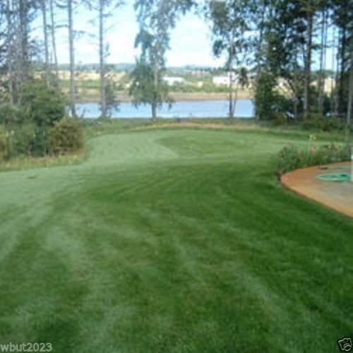 Fescue grass seed blend ,Combat Extreme, For Northern Zone - USDA Zones 4 - 5