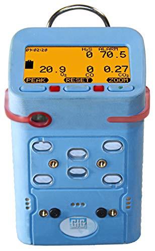 GfG Instrumentation G460-1103240024 Portable O2, cc LEL, COSH, NO2 Detector, NiMH