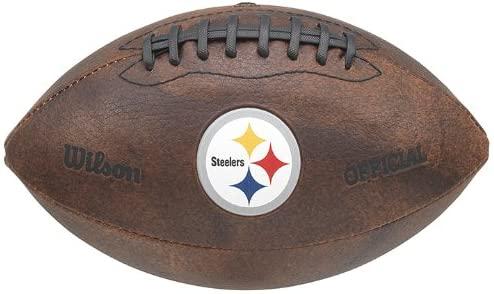 NFL Color Logo Mini Football, 9-Inches
