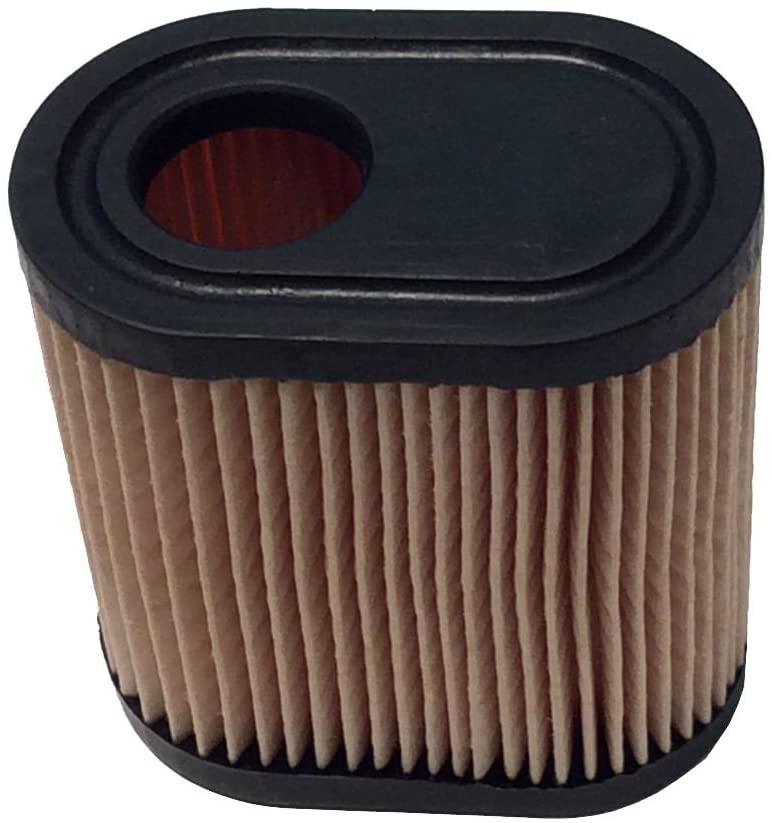 Air Filter Replaces Tecumseh 36905 (from:ozark_sales, #UGEIO8112010198450