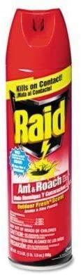 Raid ANT & Roach Killer AEROSOL 17.5 OZ