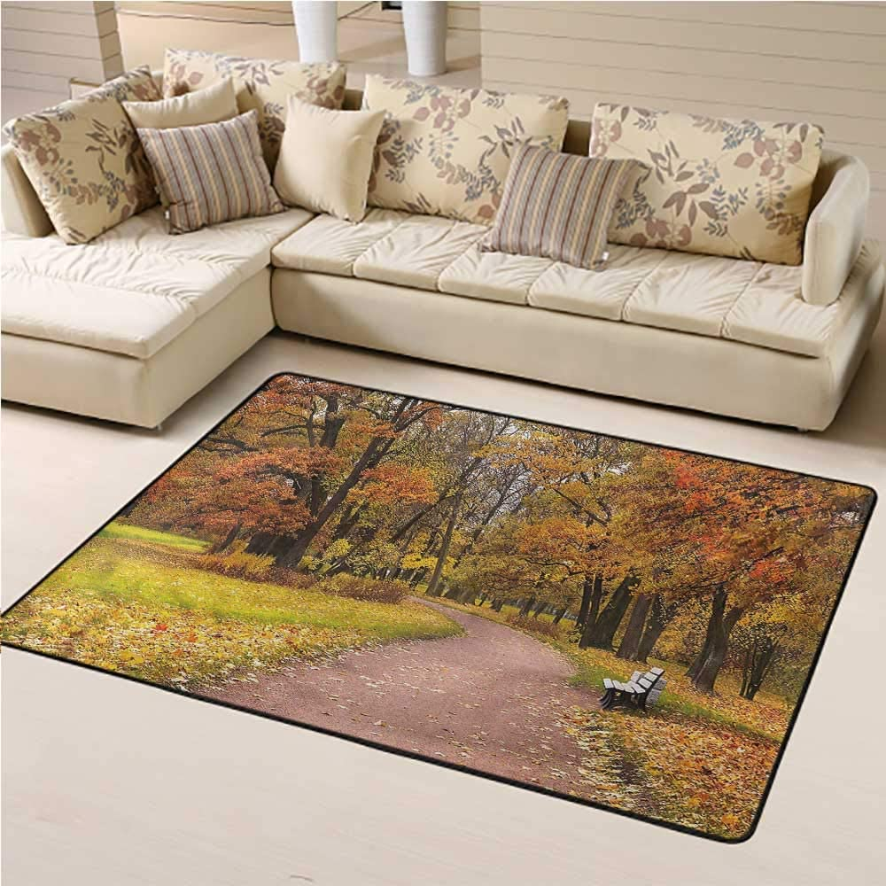 Area Rug Fall, Idyllic Rural Park Woods Kids Playing Mat for Boys and Girls Play and Learn 3 x 5 Feet
