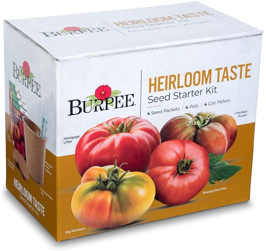 Burpee Heirloom Taste Starting Kit Mortgage Lifter, Cherokee Purple, Big Rainbow & Brandywine Pink   4 Beefsteak Tomato Seed Packets, 4 Pots, 4 Coir Pellets & 4 Plant Markers