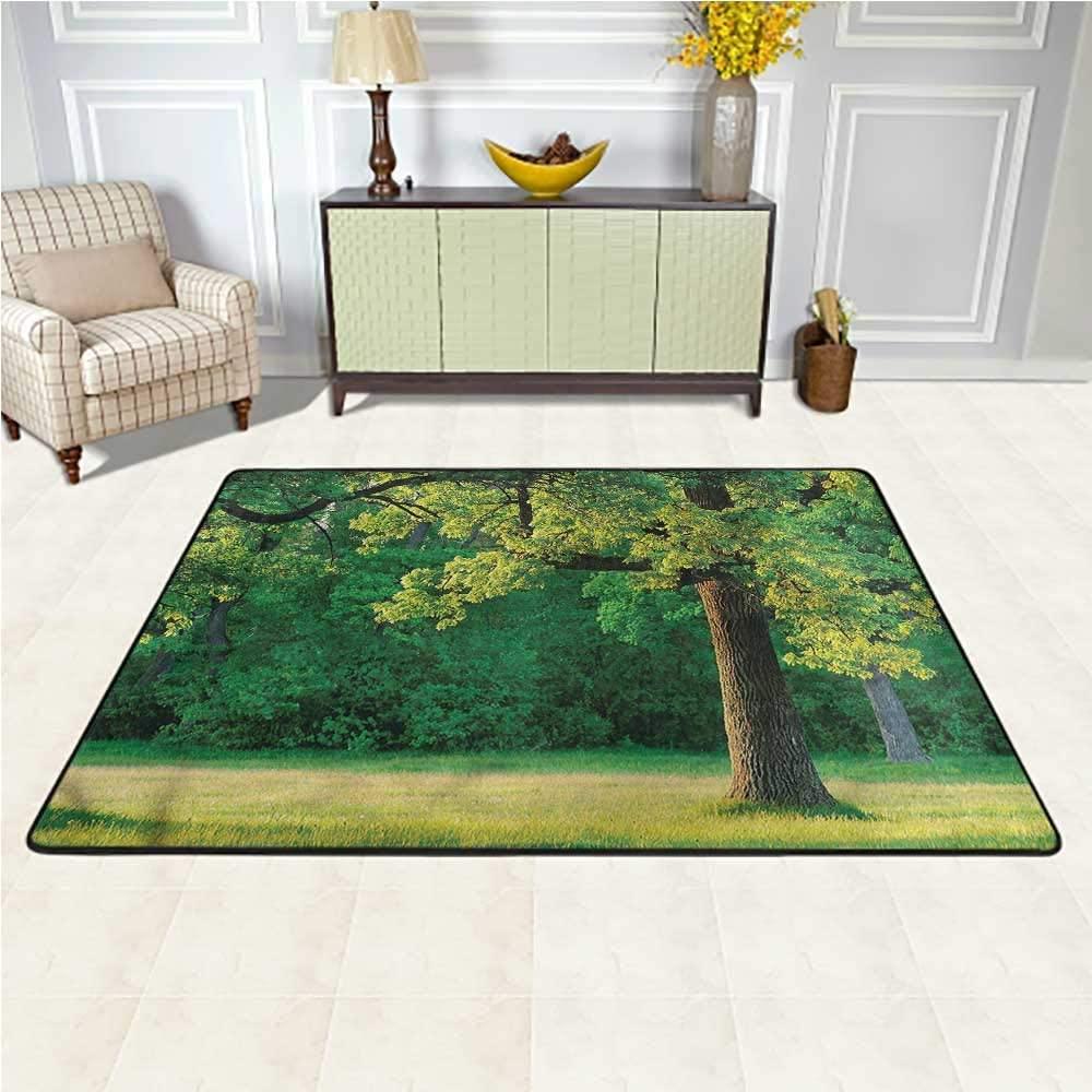 Carpet Tree of Life, Fresh Oak Leaves Park Ultra Soft, Luxury Carpet for Kids Nursery Teens Room Girls Boys 5 x 7 Feet