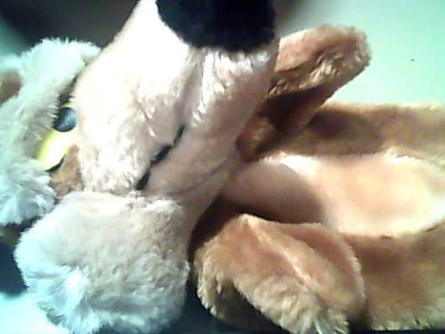 Road Runner Wile E. Coyote Plush Hand Puppet