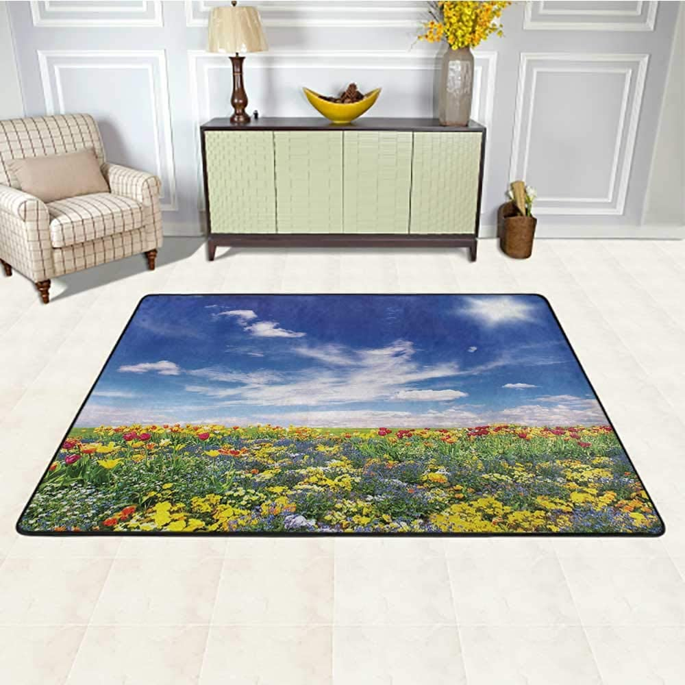 Flower Kids Rug 5' x 7', Flowers Meadow and Cloudy Sky Nature Landscape Print Vivid Sun Spring Art Home Decor Kids Play Rug, Multicolor
