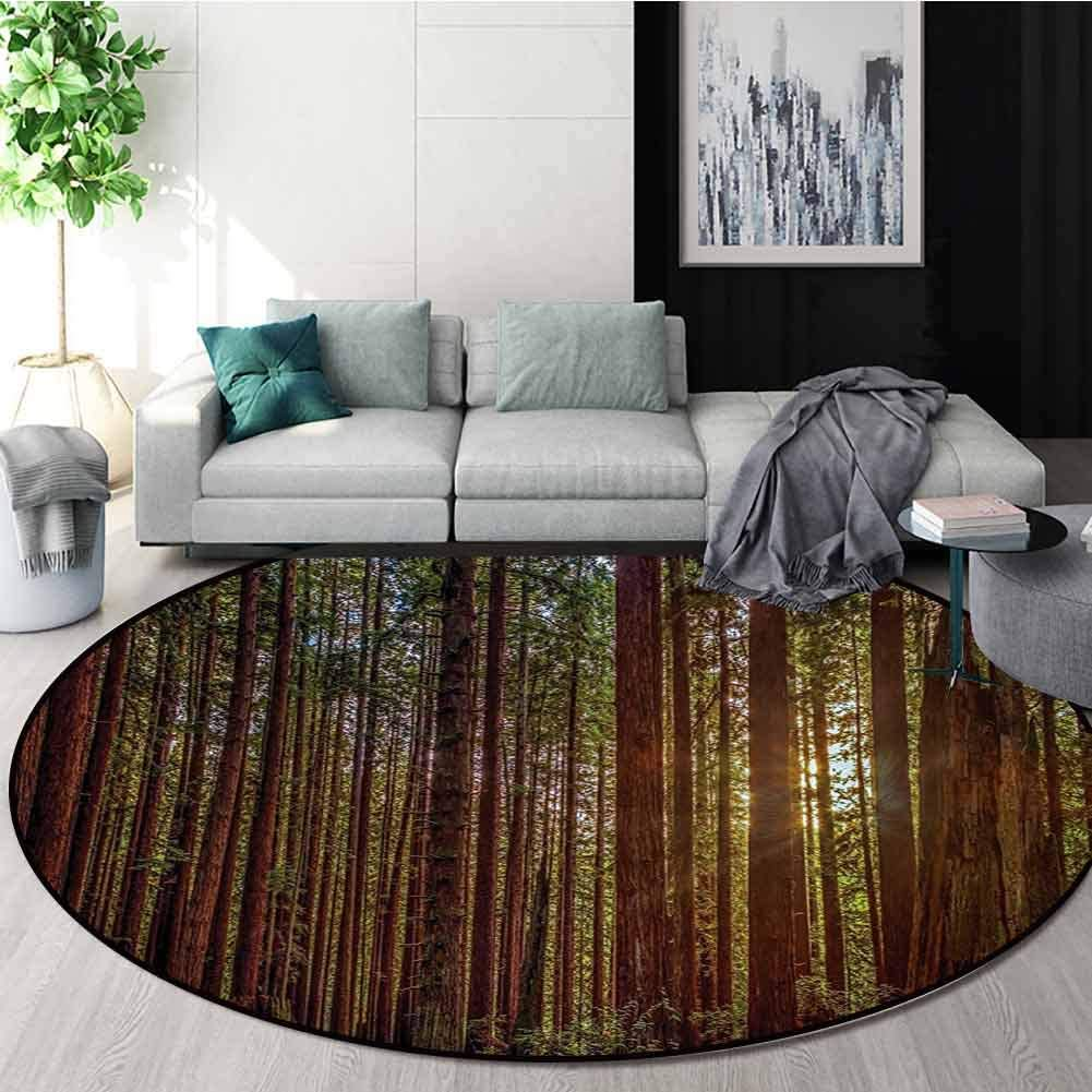 RUGSMAT Forest Small Round Rug Carpet,Redwood Forest in California USA Nature Outdoors Landscape Woods Park Door Mat Indoors Bathroom Mats Non Slip,Round-24 Inch Redwood Green Yellow