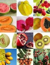 15 Seeds Rare Fruits Mix Sweet Edible Plant Tree Fragrant Exotic Fruit Seed Pack FR23