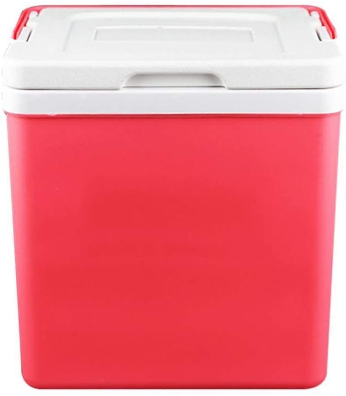 GUAPIHUO Yyijunbxi Mini Fridge, 10L Car Refrigerator Outdoor Small Incubator Portable Car Home Medicine Cosmetics Storage Wild Barbecue Fishing Storage Box (Color Name : Pink)