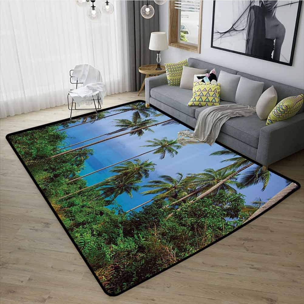 Palm Tree Decor Conference Room Carpet, Presents Decor Idea Slip-Resistant Extra Absorbent for Living Room Kids Room, W19 x L31 Blue Green