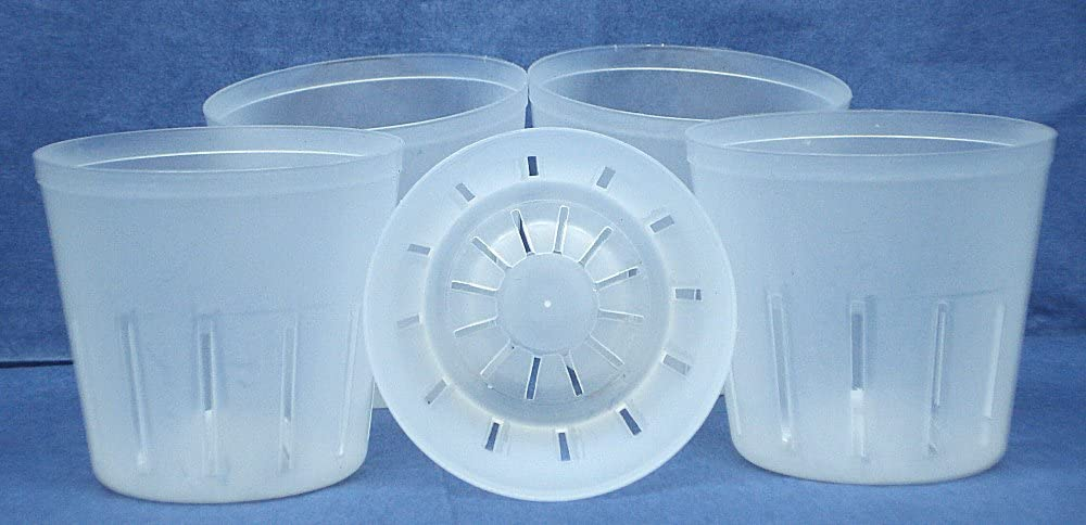 Clear Plastic Pot for Orchids 3 inch Diameter - Quantity 5