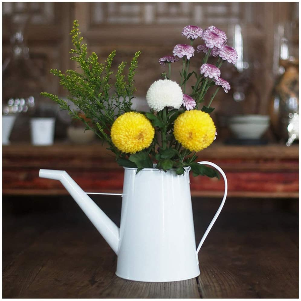 Watering Kettle Home Gardening Light Watering Flower Long Mouth Pot Wrought Iron Retro Hand-Painted Red Long Mouth Watering Flower Kettle (Color : White)