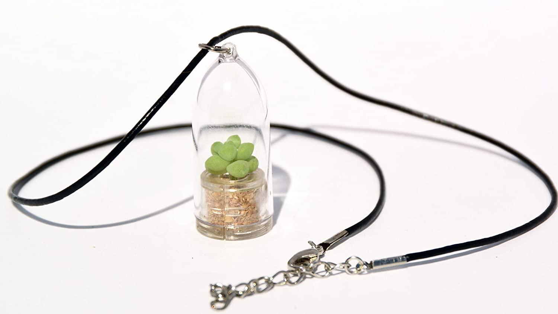 Live Succulent Terrarium Flower Necklace - Bubbly - Live Cacti Succulent Plant Necklace Keychain- Living Plants Neckalce Terrarium Capsule - Boo-Boo Plant (Bubbly, 18