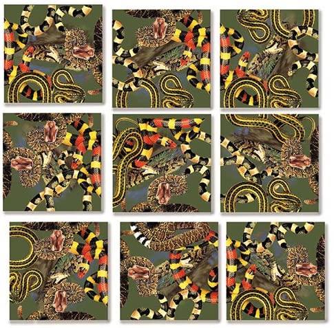 B Dazzle Snakes Scramble Squares 9 Piece Puzzle