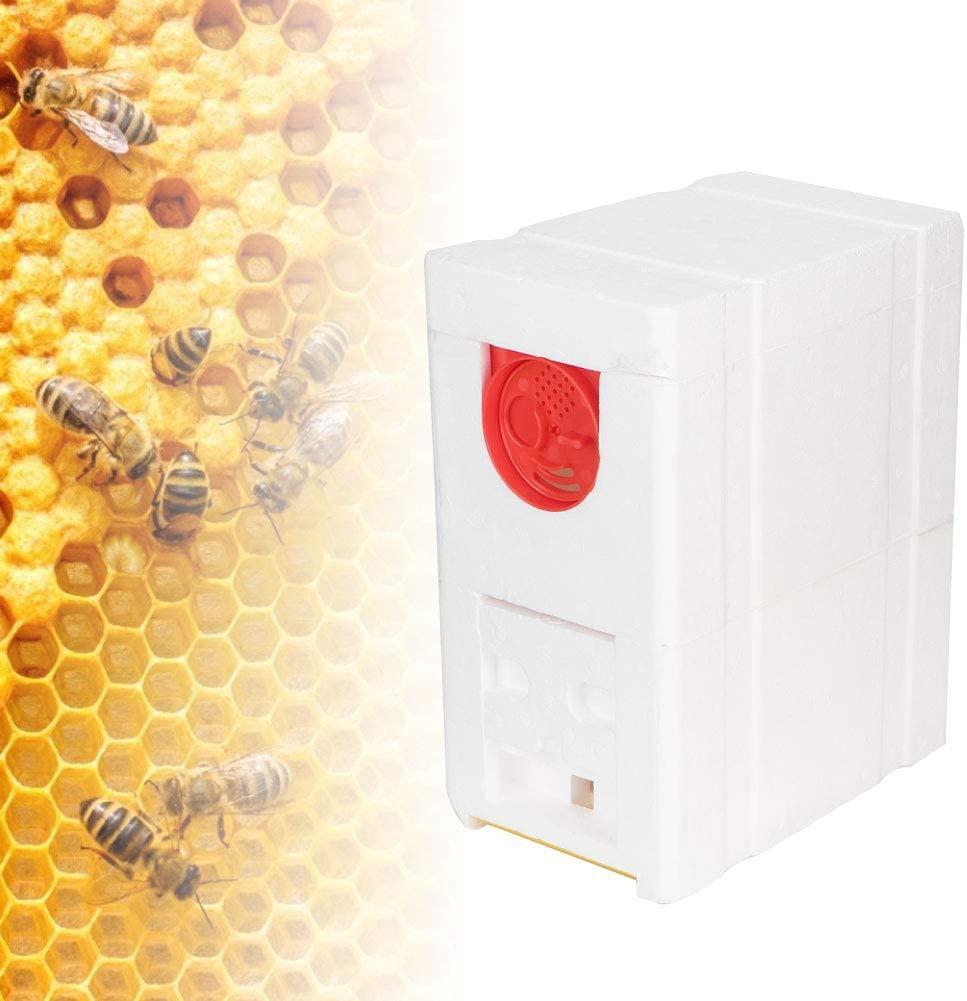 Fishlor Beekeeping Brood House Box, Double-Deck Foam Beekeeping Brood House Box Beehive Beekeeping Beekeeper Equipment