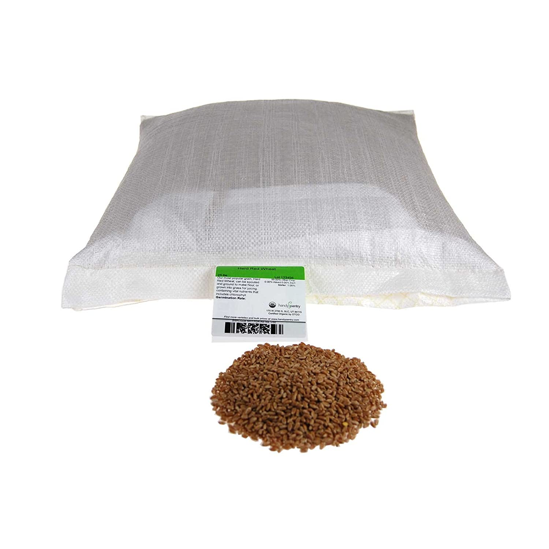 Organic Hard Red Wheat Seed: 25 Lb - Handy Pantry Brand - Grow Wheatgrass, Flour, Grain & Bread, Emergency Food Storage, Ornamental Wheat Grass - Non-GMO, Sprouting Wheat Berries - High Germination