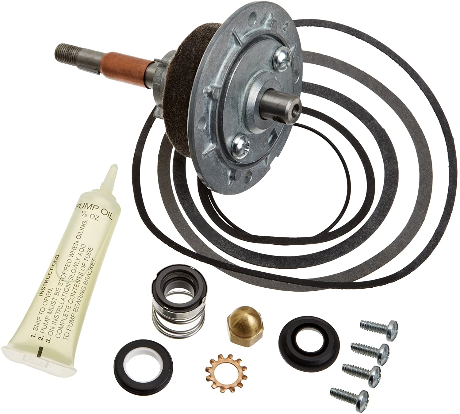 Pentair A2010100 Shaft and Bearing Pump Module Replacement MT Commercial Pool Heater