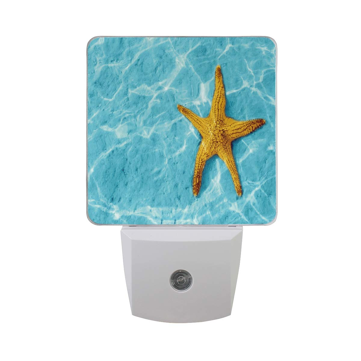 Night Light Starfish in Blue Water Auto Sensor LED Dusk Nightlight Decorative to Dawn Plug in Indoor for Kids Childrens 2 Pack