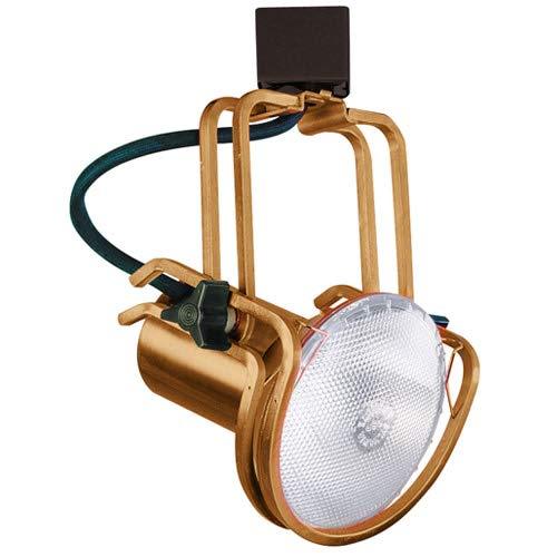 Elco Lighting ET655CP Line Voltage PAR30 Wire Form Fixture