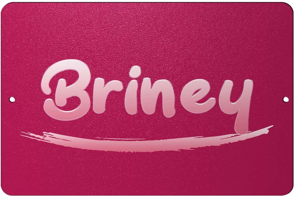 Makoroni - Briney Female Name 12x18 inc Aluminum Decorative Wall Street Sign