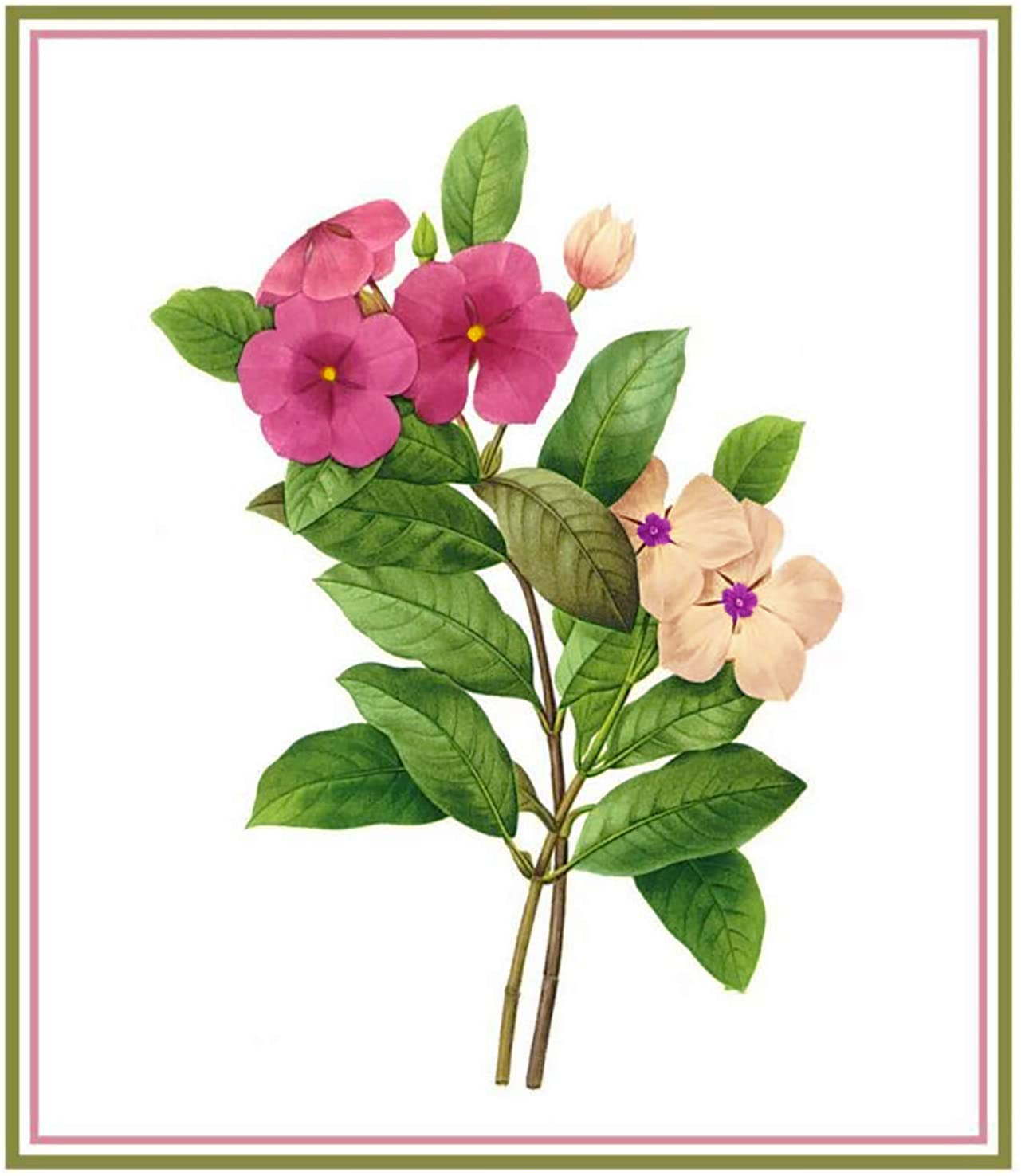 Periwinkle Flower by Redoute Counted Cross Stitch Pattern