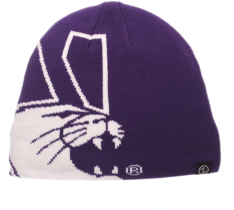 Zephyr NCAA Teen-Boys Peek Knit Beanie