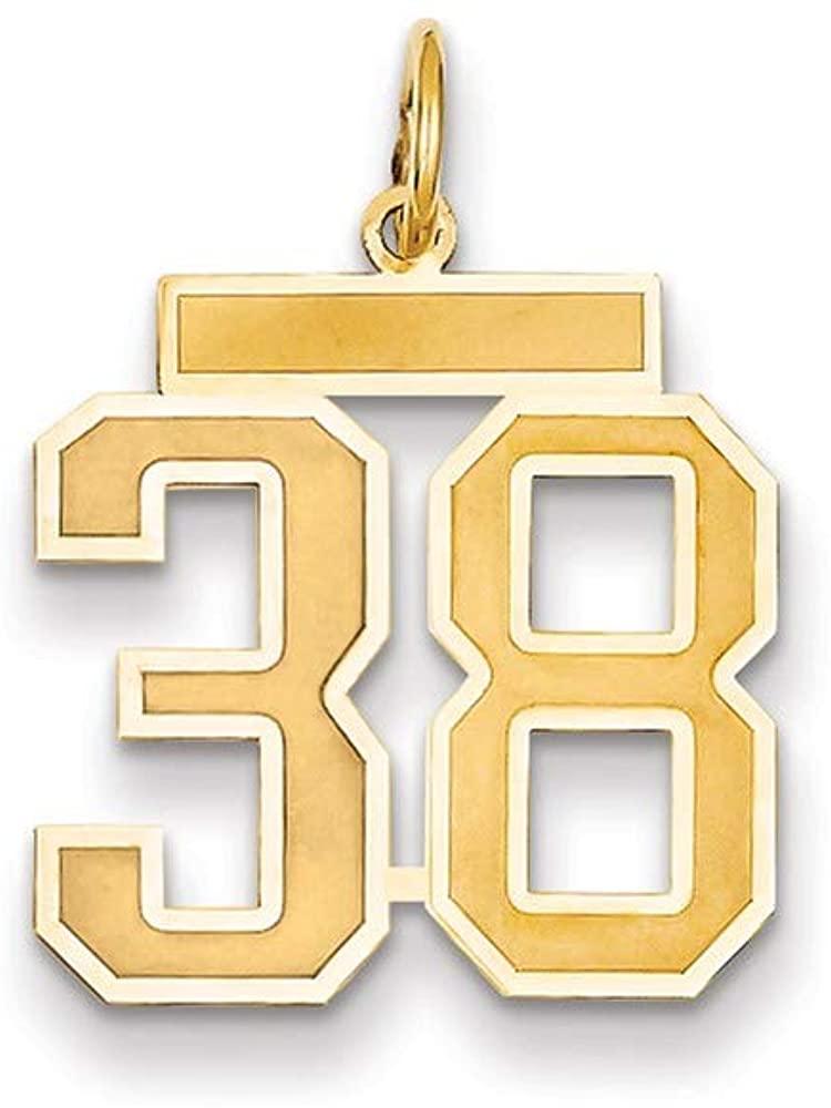 14K Medium Satin Number 38 Charm