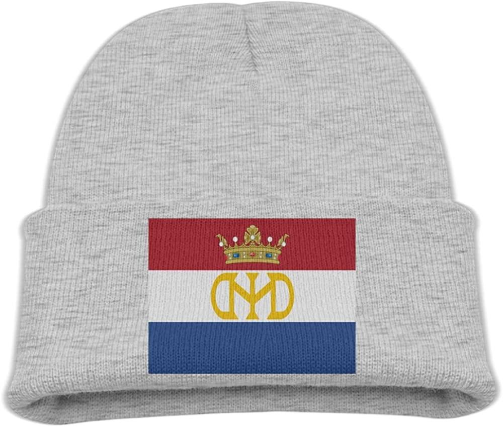 ZWZ Flag Of New Holland Kid's Hats Winter Funny Soft Knit Beanie Cap Children Unisex