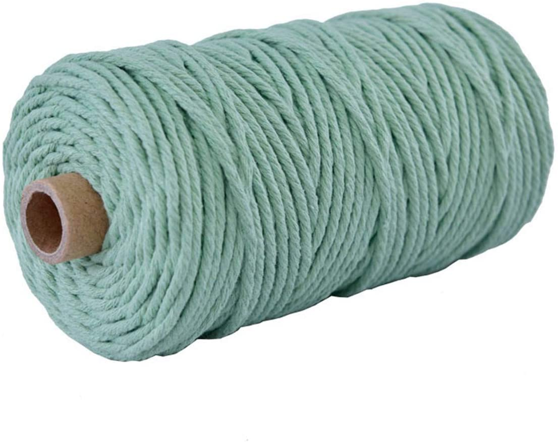 Vivianbuy Mint 3mm/4mm Dia 328ft Macrame Cotton Cord Twist Macrame String Soft Macrame Rope for Handmade Plant Hanger Craft Making and DIY Projects