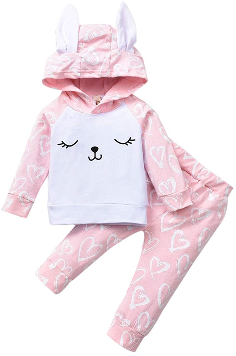 MSDMSASD Baby Girl Floral Hoodie Outfit Long Sleeve Sweatshirt Tops Floral Pants Clothes Set with Pocket