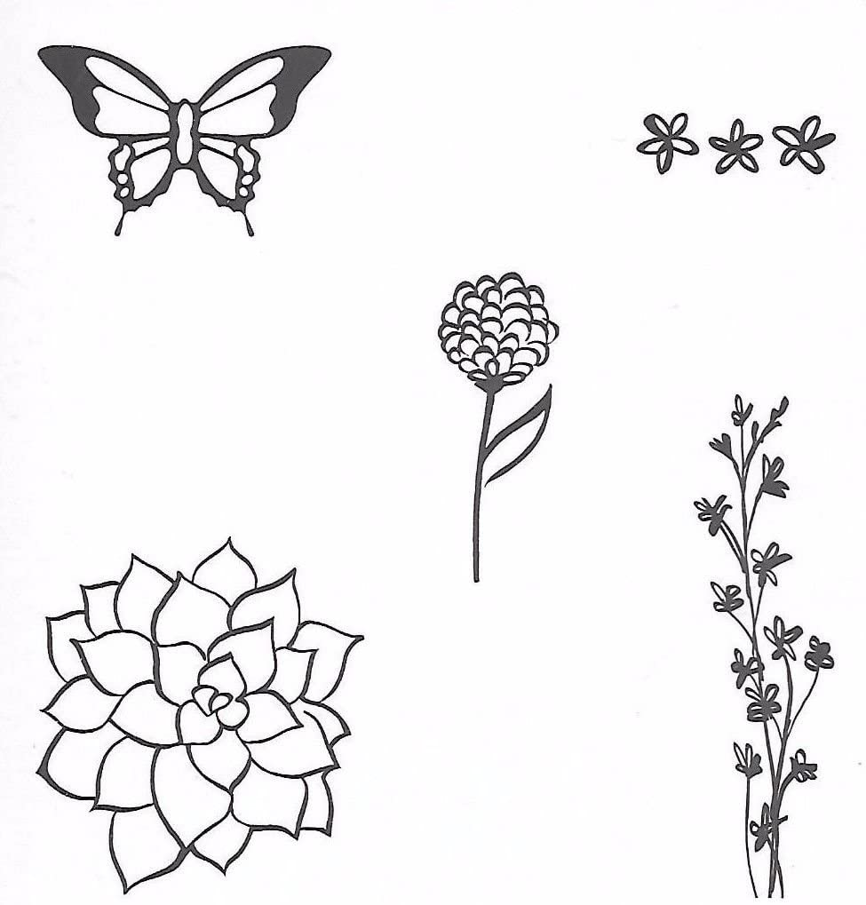 Stampin Up!~~NATURES PERFECTION~~Clear mount~~NEW~~~Multi Occasion~SAB~2015 ##bearbearsgarden