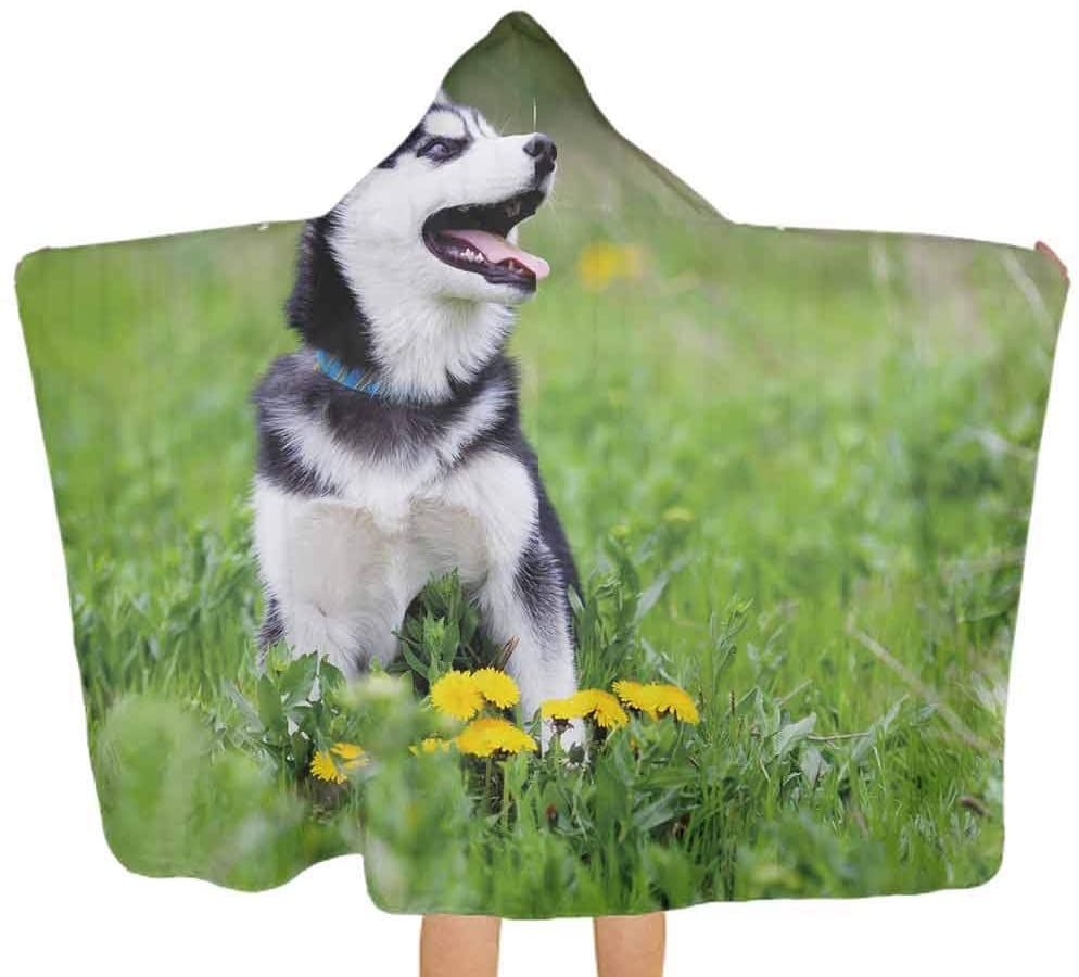 Baby Hooded Towel Alaskan Malamute Puppy on Grass Unisex Toddler Bath Towels Thick, and Exceptionally Large, 51.5x31.8 Inch