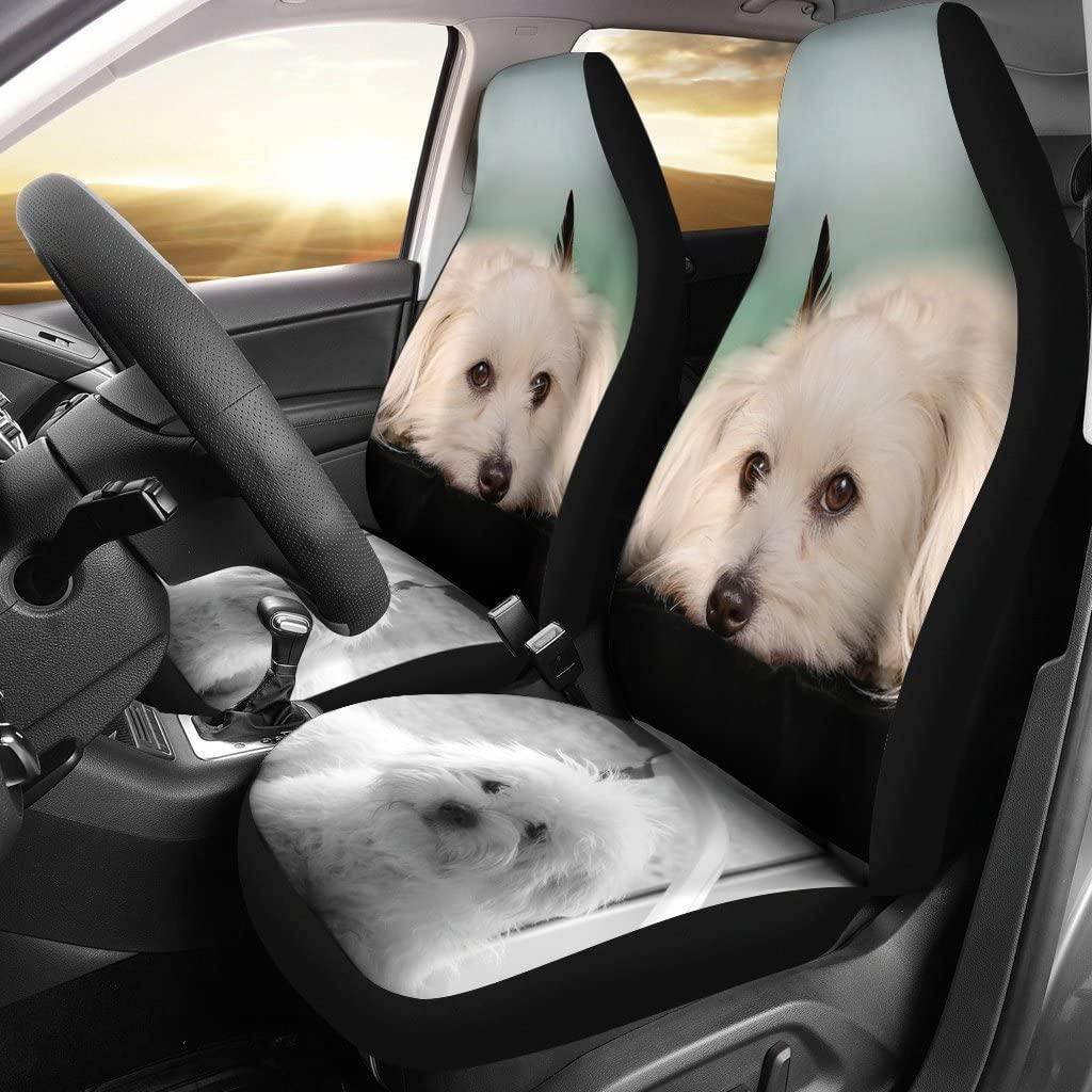 Pet Animal Designs Coton De Tulear Dog Print Car Seat Covers