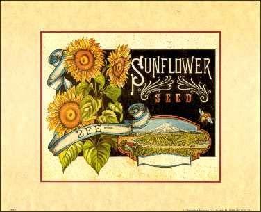 Sunflower Paper Tole 3D Kit 8x10