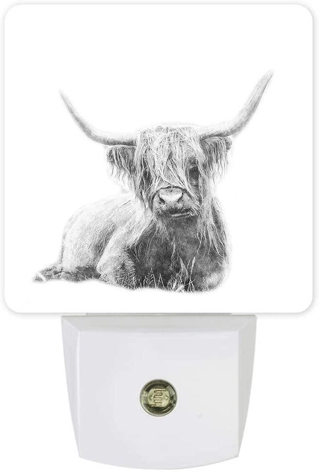 Plug in Dimmable Led Night Light Animal Scottish Cow Bull Soft Warm White Nightlights for Hallway,Bedroom, Kids Room