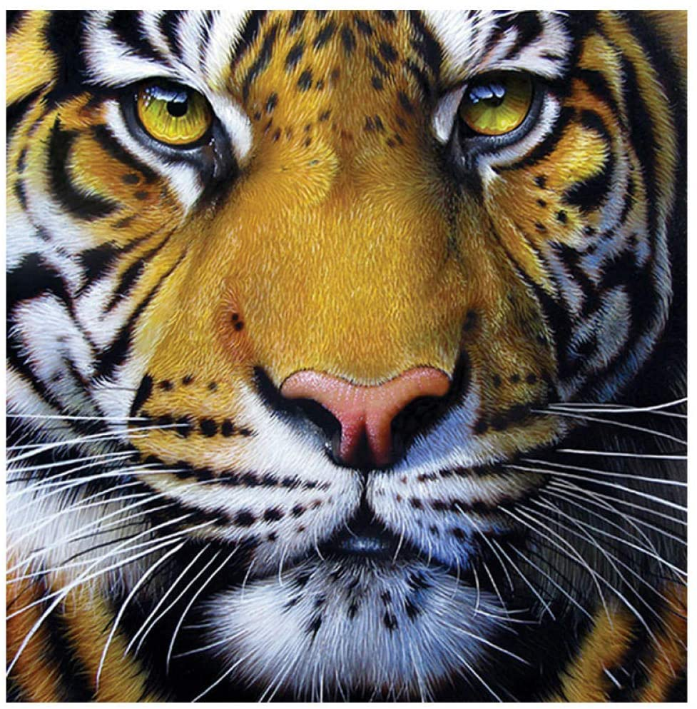 5D DIY Diamond Painting Tiger Home Decor Cross Ctitch Kit Full Round Drilling Embroidery Arts Craft Send Gifts 50x50cm