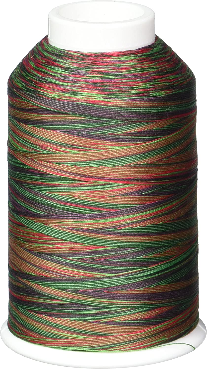 YLI 2443014V 3-Ply Machine Cotton Quilting Variegated Thread, 3000 yd, Festival