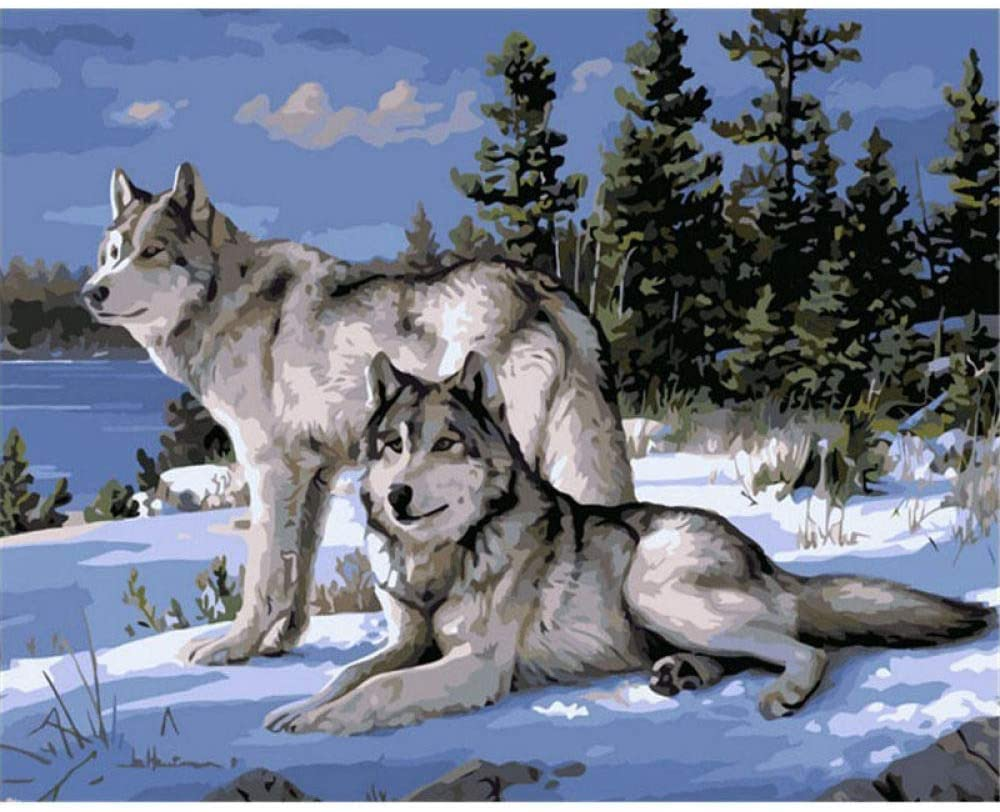 DBDSZYH Paint by Number Kits,Wolf Couple Color Drawing Board Paint by Numbers for Adults by DIY Adult Paint by Number Kits for Beginners On Canvas Rolled 16&Quot; by 20&Quot,16X20Inch with Frame