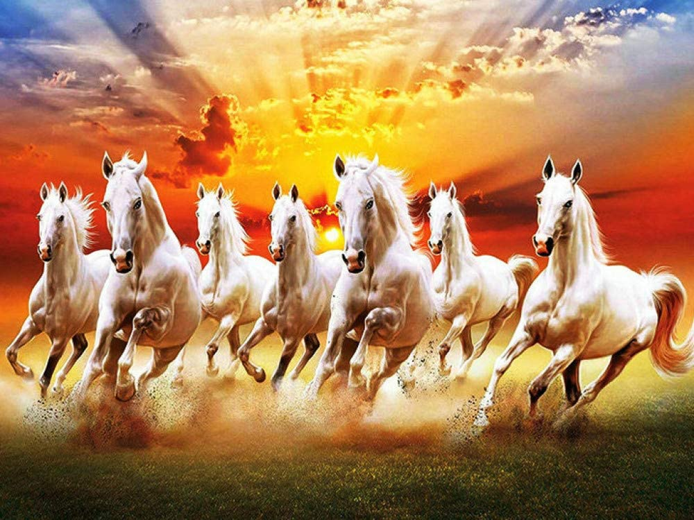 DCPPCPD 5D DIY Diamond Painting, Group of Horses Running Under The Sky Kits for Adults Full Drill Crystal Rhinestone Embroidery Cross Stitch Arts Craft Canvas